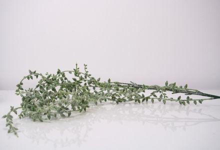Slika Grana 123 cm