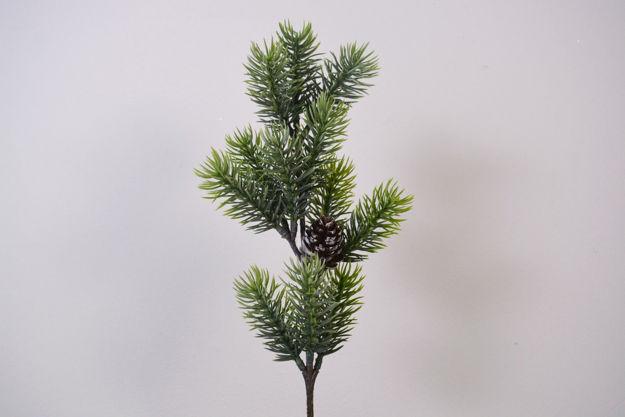 Slika Grana bora 46 cm