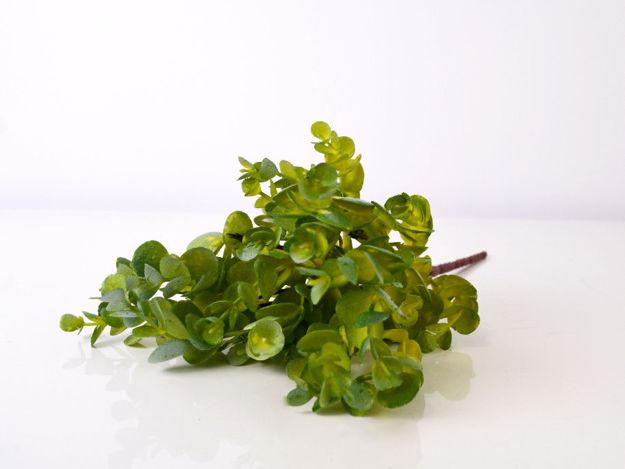 Slika Buket zelenila 33 cm