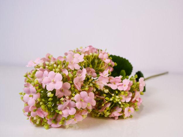 Slika Grana hortenzija 63 cm