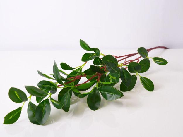 Slika Grana zelenila 72 cm