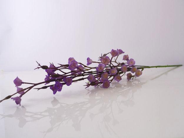 Slika Poljsko cvijeće 69 cm