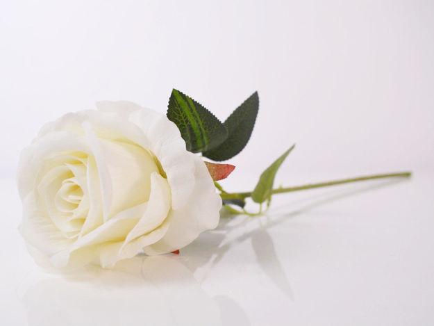 Umjetna bijela ruža