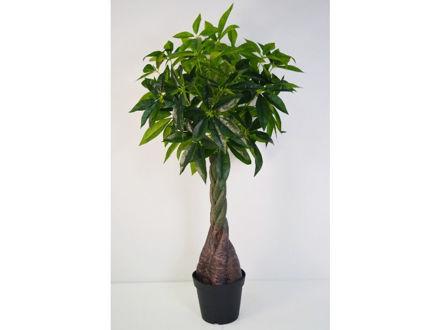 Stablo u posudi 140 cm