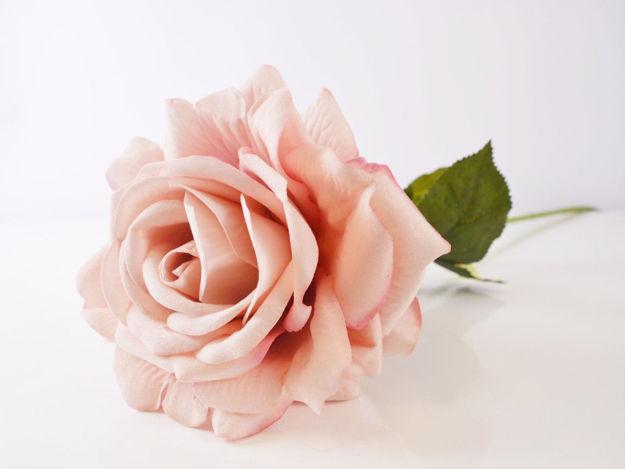 Slika Ruža 74 cm