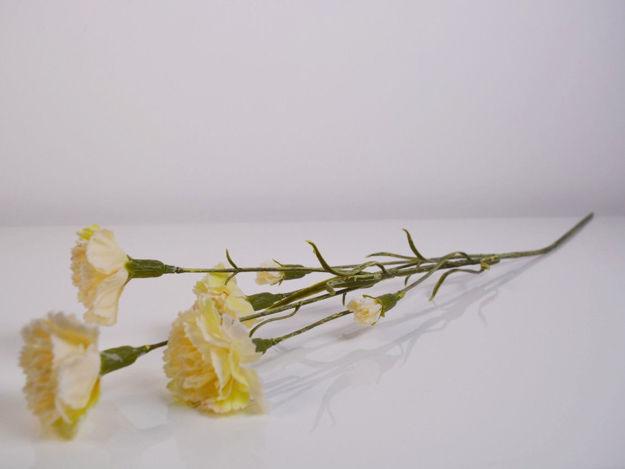 Slika Grana karanfila 65 cm