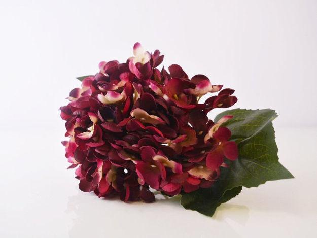 Slika Hortenzija 52 cm