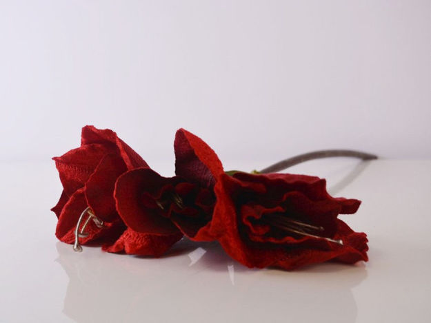 Slika Amarilis 48 cm