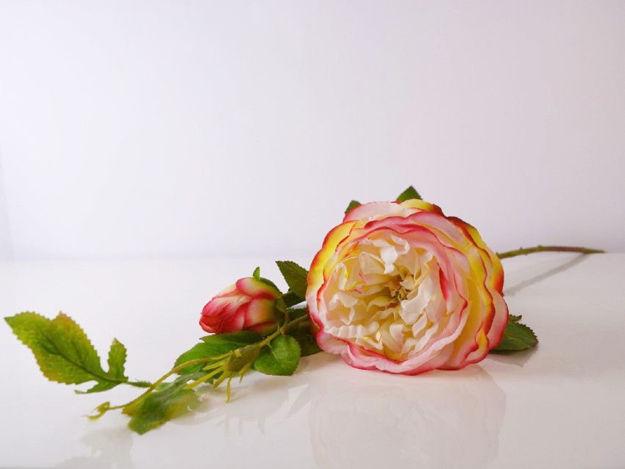 Slika Ruža 85 cm