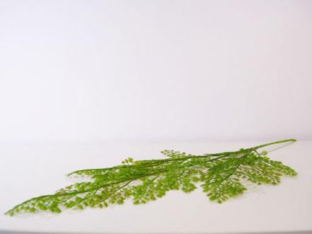 Slika Grana zelenila 90 cm