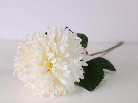 Slika Cvijet 56 cm