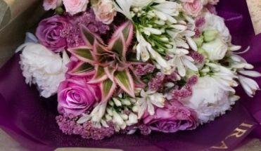Svježe cvijeće 05