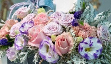 Svježe cvijeće 19