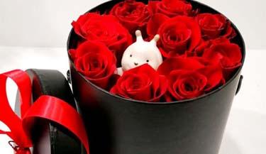 Valentinovo 09