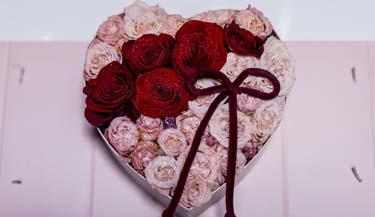 Valentinovo 19