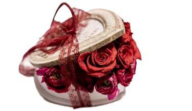 Valentinovo 24
